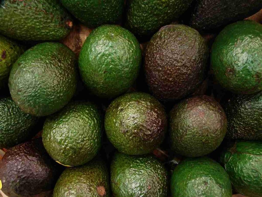 Avocados sind echte Figurwunder